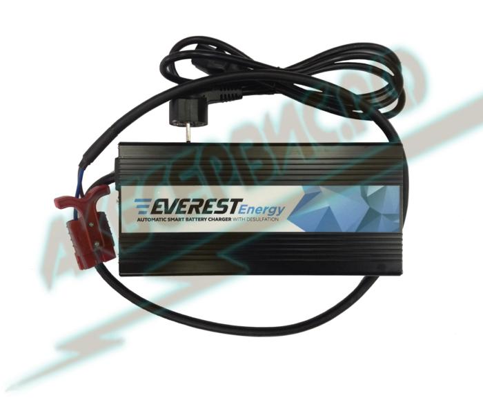Акбсервис.РФ | Зарядное устройство EVE-24-8